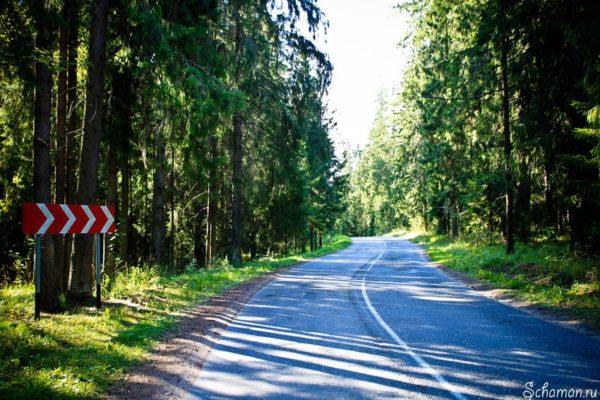 Дорога в Питер